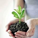 5 Contoh Gambaran Corporate Social Responsibility (CSR)